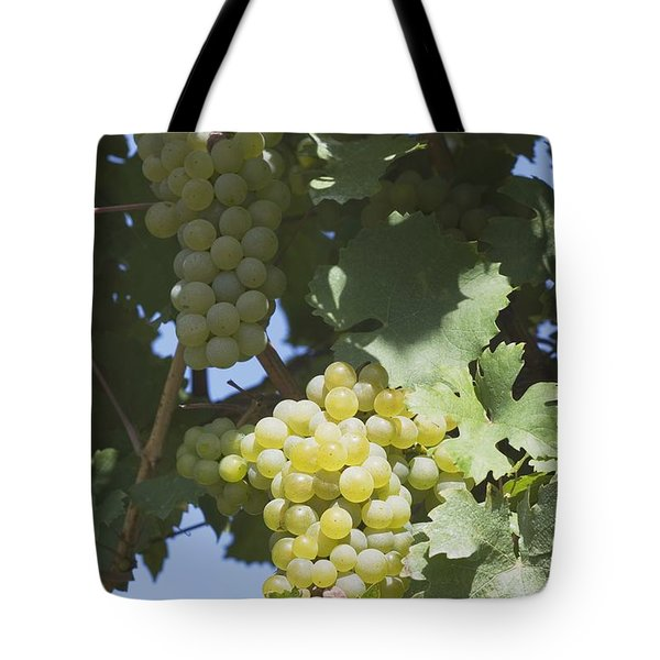 White Grapes On The Vine Tote Bag by Michael Interisano
