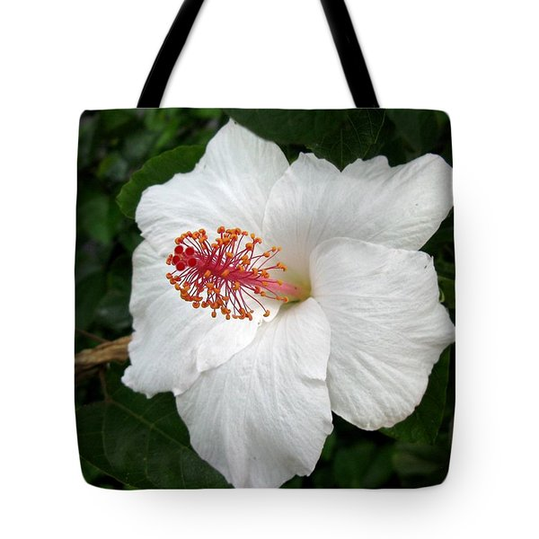 Tote Bag featuring the photograph White Hibiscus by Carol Sweetwood