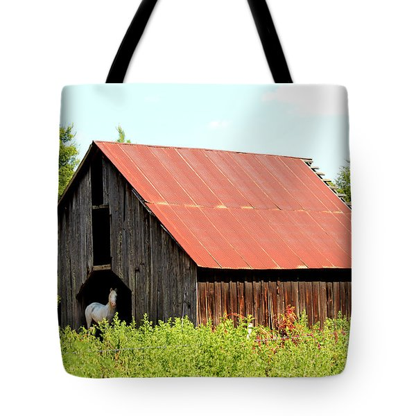 Tote Bag featuring the photograph White Horse Waiting by Kathy  White