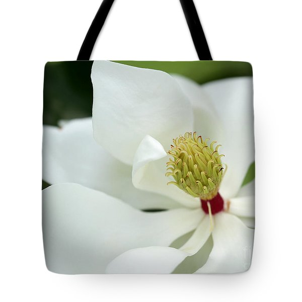 White Magnolia Tote Bag by Sabrina L Ryan