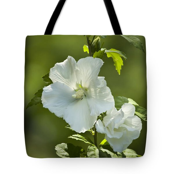 White Rose Of Sharon Tote Bag by Teresa Mucha