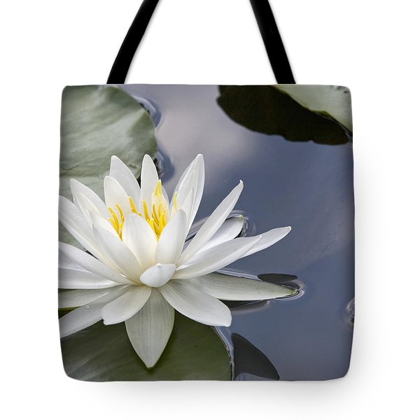 White Water Lily Tote Bag by Vladimir Sidoropolev