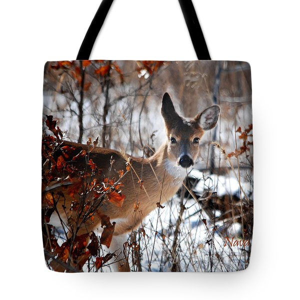Whitetail Deer In Snow Tote Bag