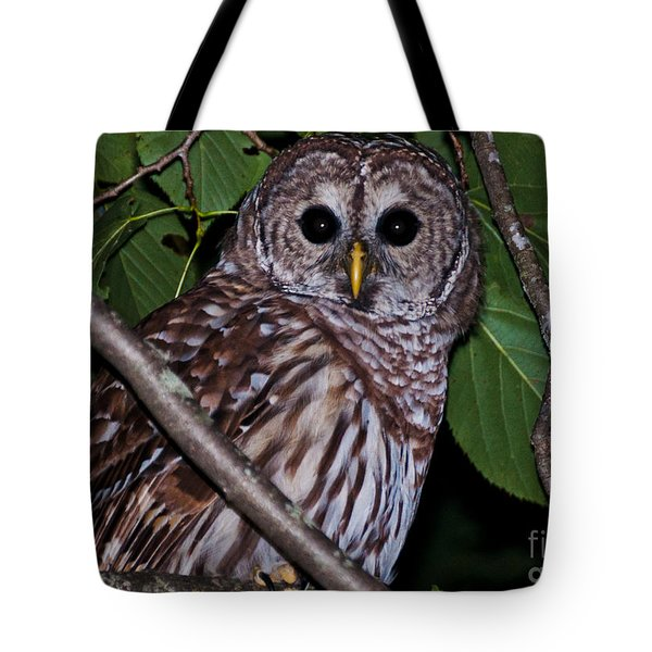 Tote Bag featuring the photograph Who Are You 2 by Cheryl Baxter