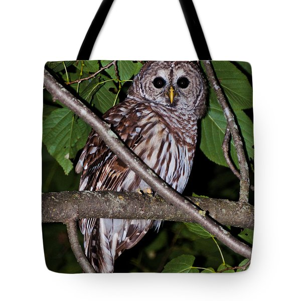Who Are You Tote Bag by Cheryl Baxter