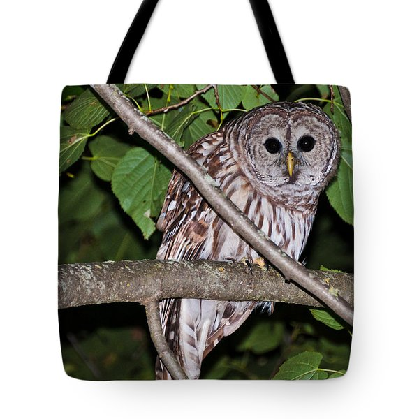 Tote Bag featuring the photograph Who Are You Looking At by Cheryl Baxter