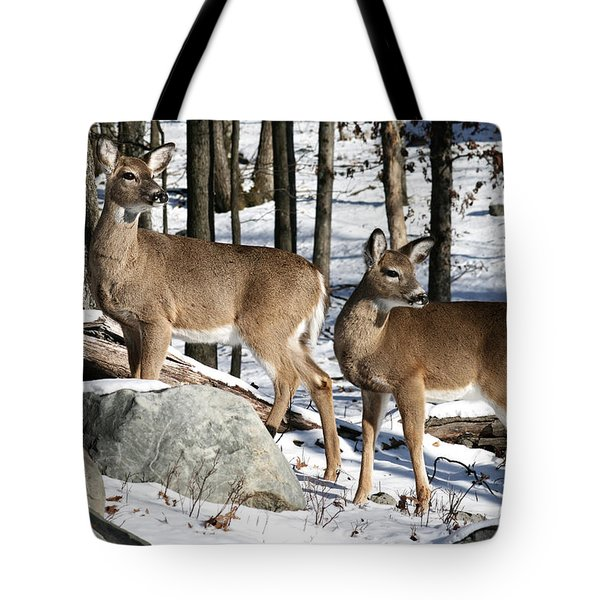 Who's There Tote Bag