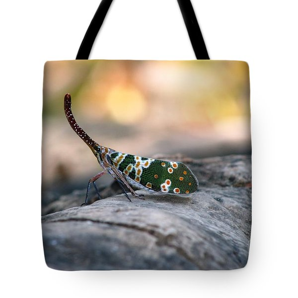 Tote Bag featuring the photograph Why Be Normal? by Nola Lee Kelsey