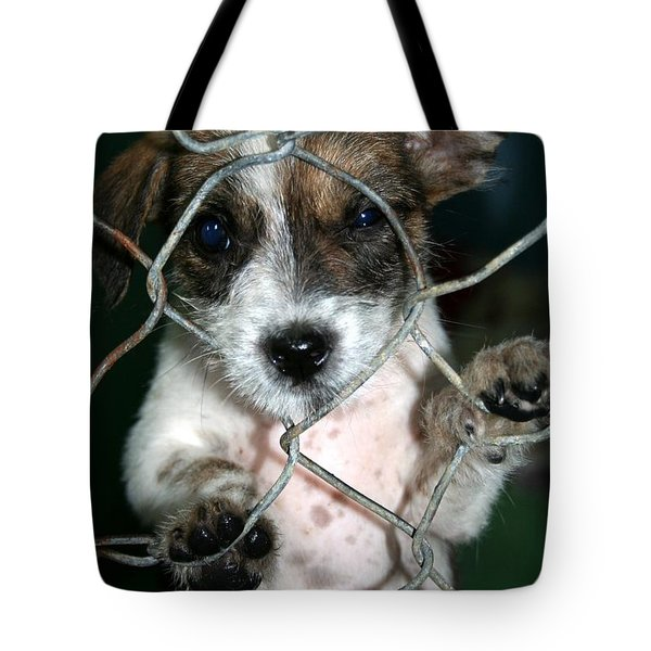 Tote Bag featuring the photograph Why by Nola Lee Kelsey