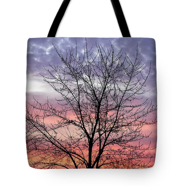 Wide Awake Tote Bag by Rachel Cohen
