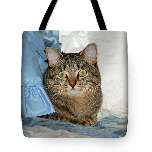 Wide Eyed Tote Bag