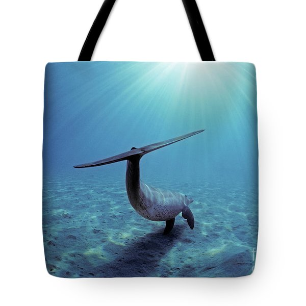 Wild Bottlenose Dolphin Tote Bag by Jeff Rotman and Photo Researchers