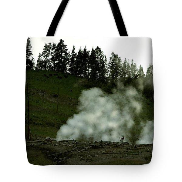 Wild Buffalo Tote Bag
