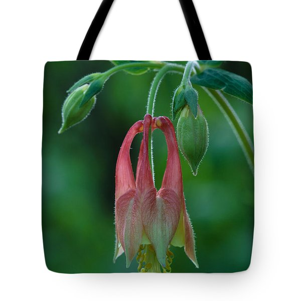 Wild Columbine Flower Tote Bag by Daniel Reed