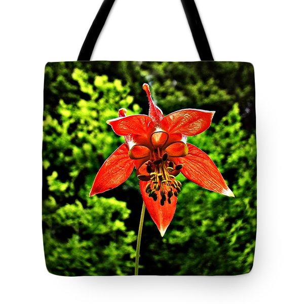 Tote Bag featuring the photograph Wild Columbine Singlet by Nick Kloepping