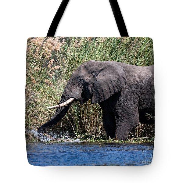 Wild Elephant Splashing In Water Tote Bag by Karen Lee Ensley