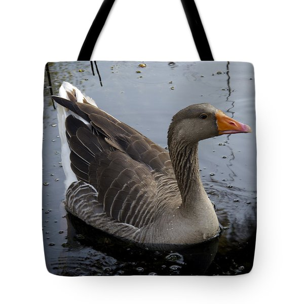 Tote Bag featuring the photograph Wild Greylag Goose by Lynn Palmer