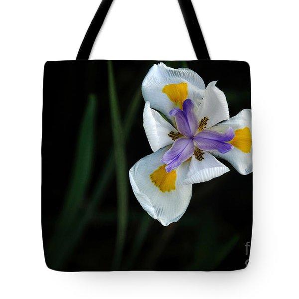 Wild Iris Tote Bag by Kaye Menner