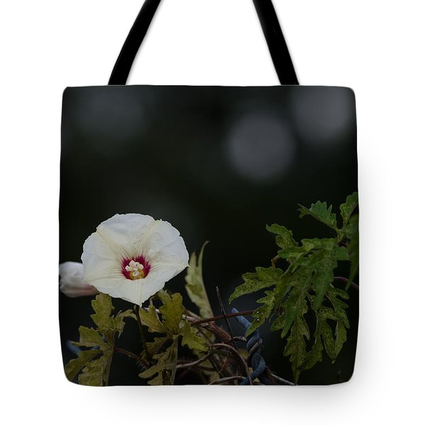 Tote Bag featuring the photograph Wildflower On Fence by Ed Gleichman
