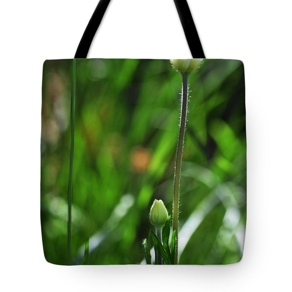 Tote Bag featuring the photograph Wildflower1 by Fran Riley