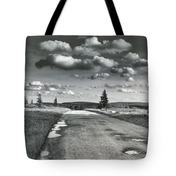 Tote Bag featuring the photograph Winding Road by Mary Almond