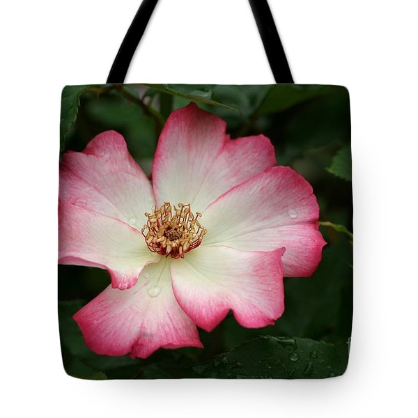 Windmill Tote Bag by Living Color Photography Lorraine Lynch