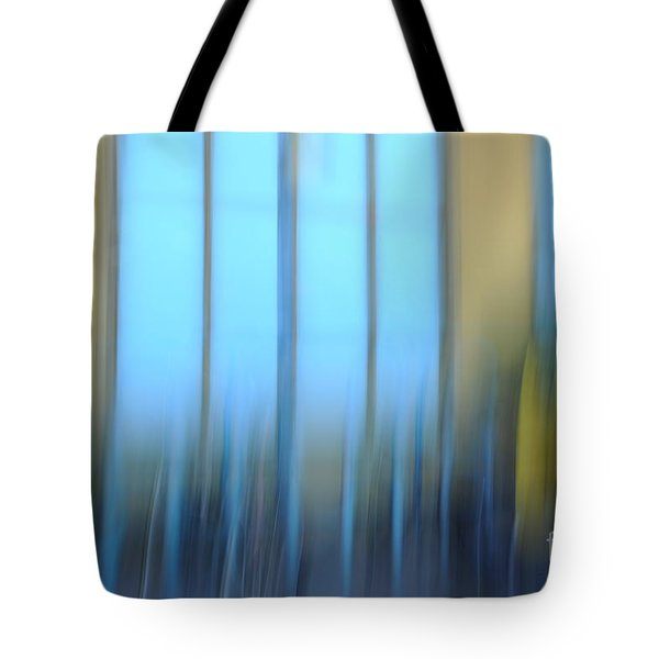 Windows And Walls Tote Bag by Catherine Lau