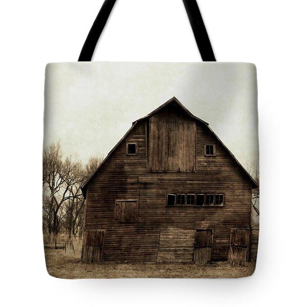 Windows1 Tote Bag by Julie Hamilton
