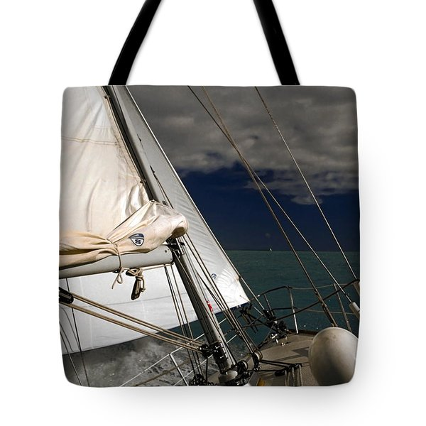 Windy Day Tote Bag by Sally Weigand