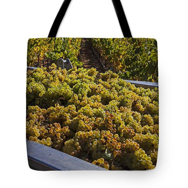 Wine Harvest Tote Bag by Garry Gay