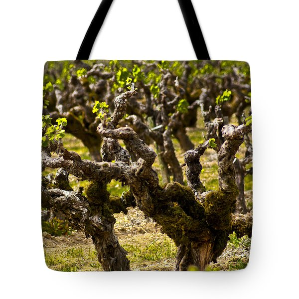 Wine On The Vine Tote Bag