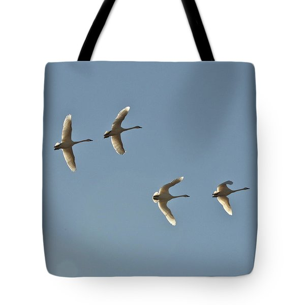 Tote Bag featuring the photograph Wings Of Light by Cathie Douglas