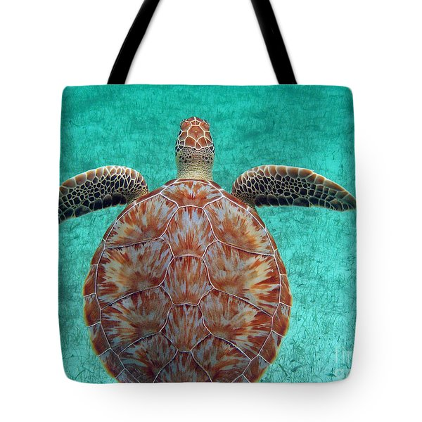 Tote Bag featuring the painting Wings Up by Li Newton
