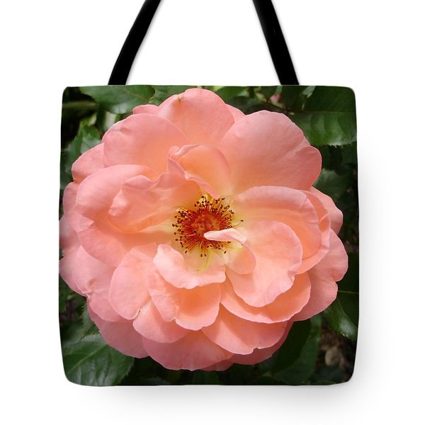 Wink Wink Tote Bag by Emerald GreenForest