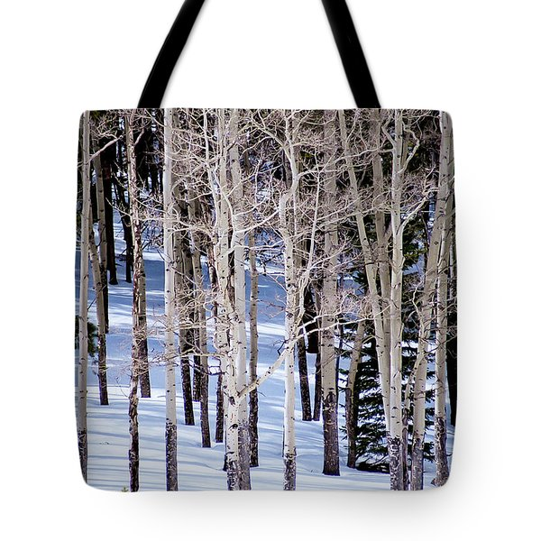 Tote Bag featuring the photograph Winter Aspens by Colleen Coccia