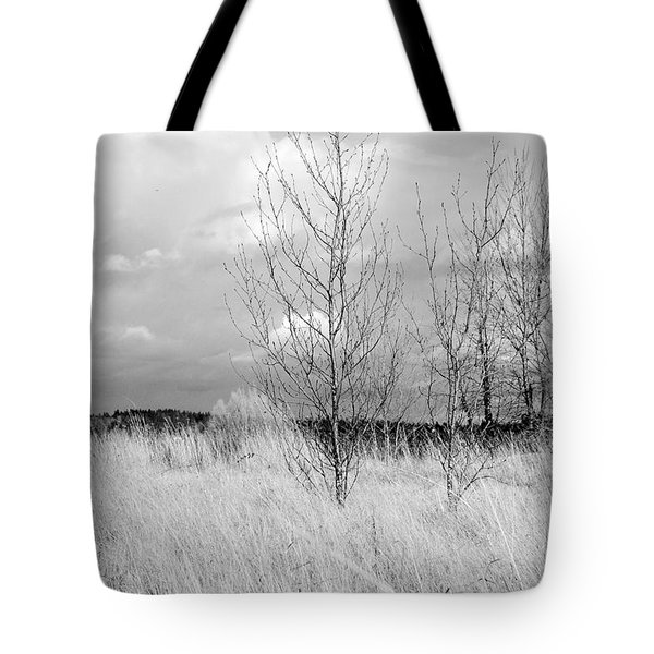 Winter Bare Tote Bag by Kathleen Grace