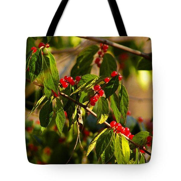 Winter Bird Treet Tote Bag by LeeAnn McLaneGoetz McLaneGoetzStudioLLCcom
