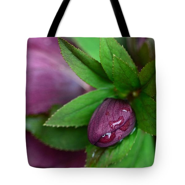 Winter Blooms Tote Bag by Lisa Phillips