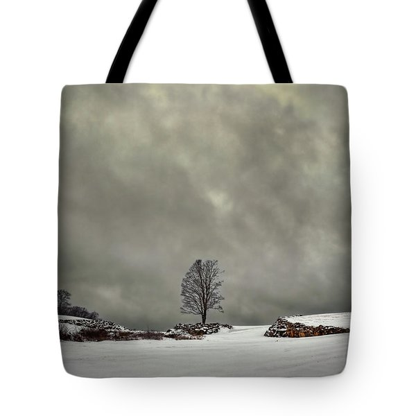 Winter Blues Tote Bag by Evelina Kremsdorf