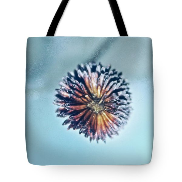 Winter Blues Tote Bag by Linda Sannuti