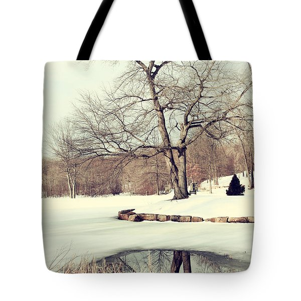 Winter Day In The Park Tote Bag by Karol Livote