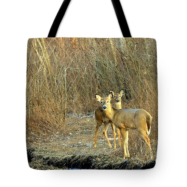 Winter Does Tote Bag by Marty Koch