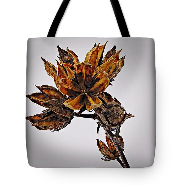 Winter Dormant Rose Of Sharon Tote Bag