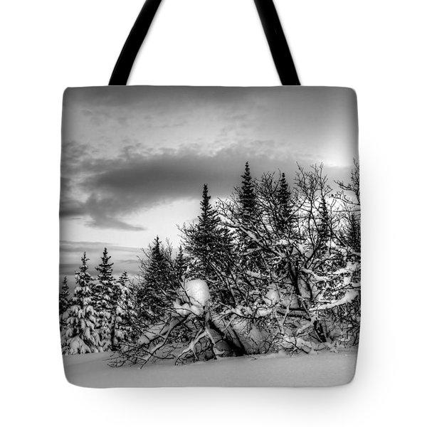 Winter Evening Tote Bag by Michele Cornelius