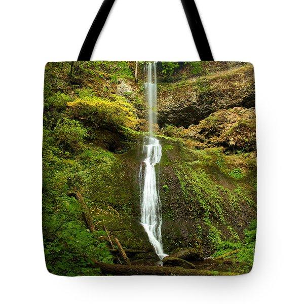 Winter Falls Tote Bag by Adam Jewell