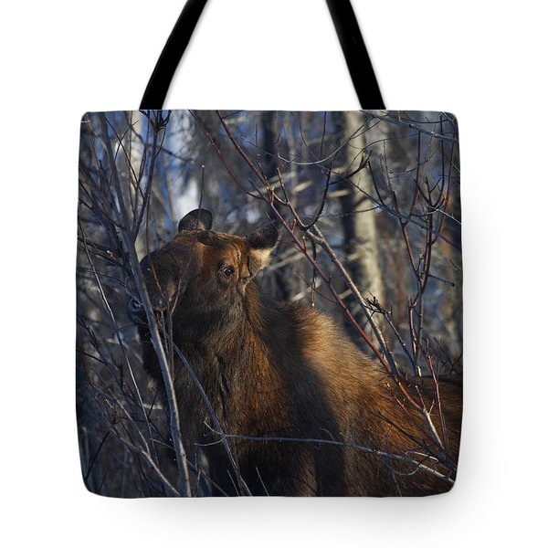 Tote Bag featuring the photograph Winter Food by Doug Lloyd