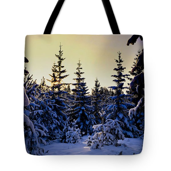 Winter Forest Tote Bag by Hakon Soreide