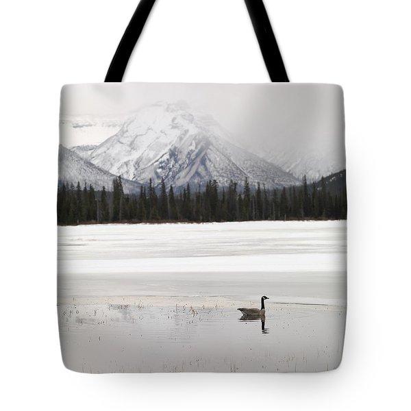 Winter Landscape, Banff National Park Tote Bag by Keith Levit
