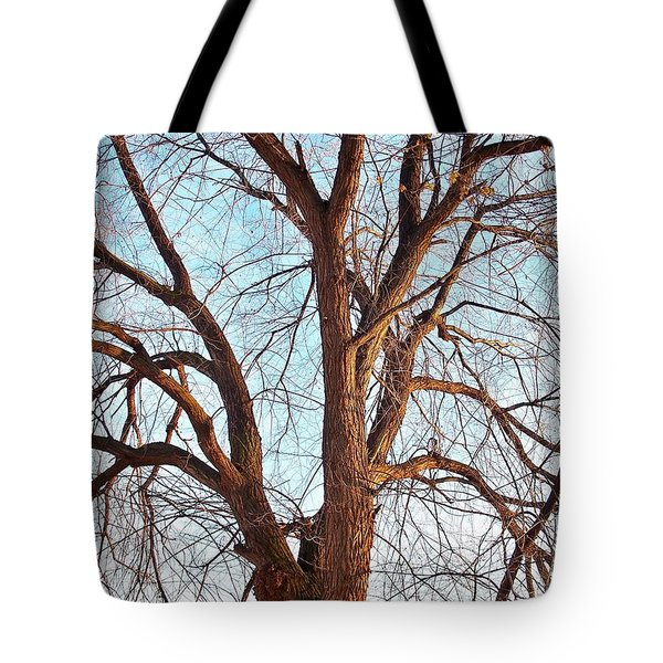 Winter Light Tote Bag by Chalet Roome-Rigdon