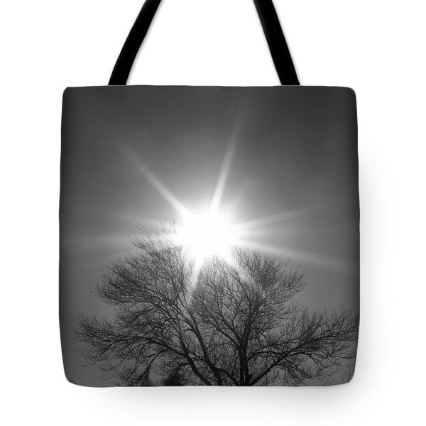 Winter Light Tote Bag by Dorrene BrownButterfield